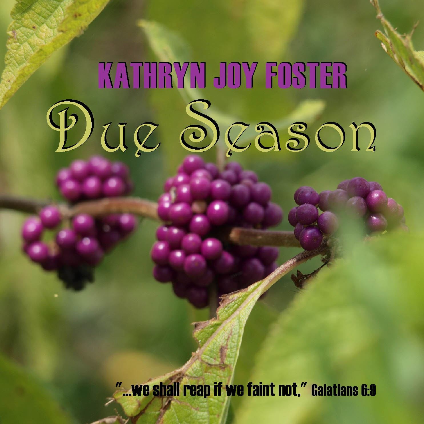 Due Season CD front